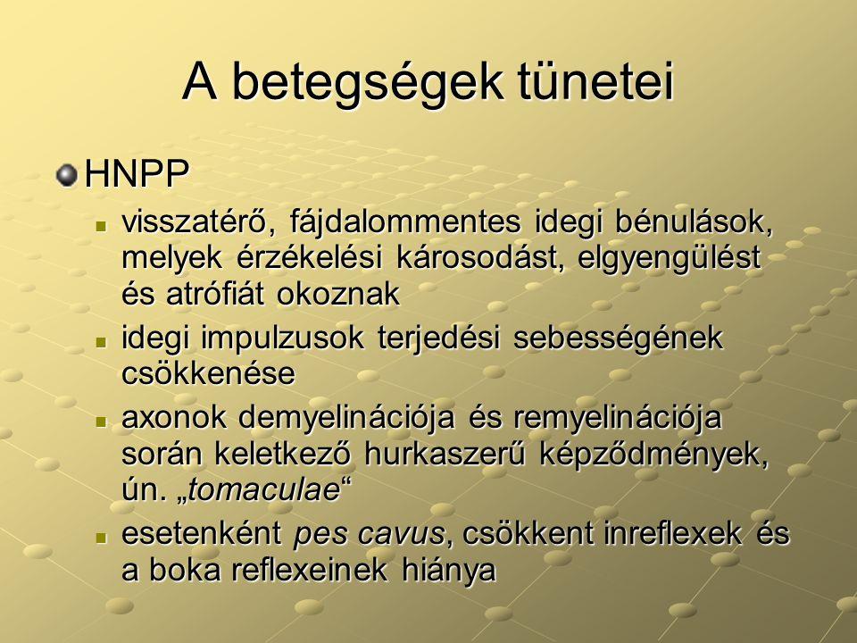 A betegségek tünetei HNPP visszatérő, fájdalommentes idegi bénulások, melyek érzékelési károsodást, elgyengülést és atrófiát okoznak visszatérő, fájda