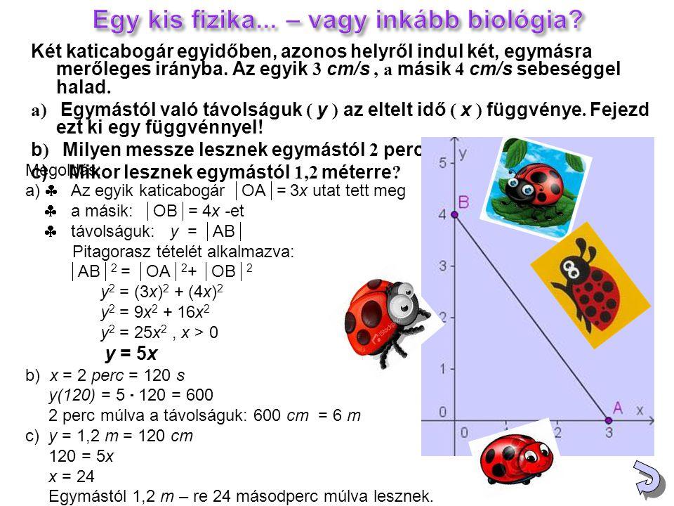 Két katicabogár egyidőben, azonos helyről indul két, egymásra merőleges irányba. Az egyik 3 cm/s, а másik 4 cm/s sebeséggel halad. а) Egymástól való t