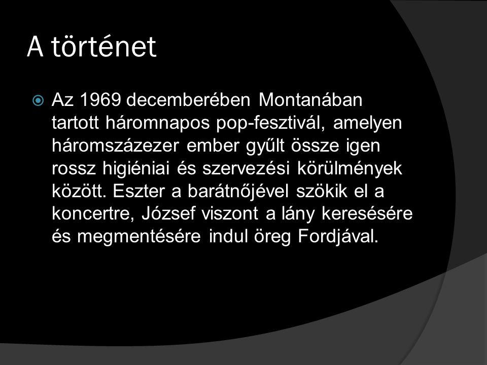 A történet  Az 1969 decemberében Montanában tartott háromnapos pop-fesztivál, amelyen háromszázezer ember gyűlt össze igen rossz higiéniai és szervezési körülmények között.