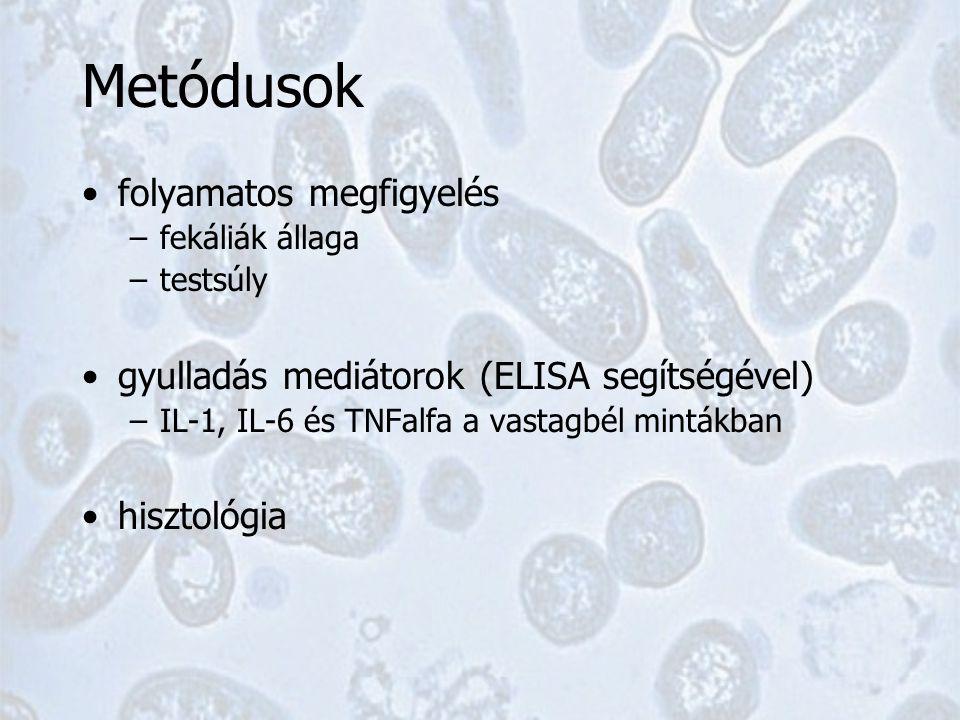 Metódusok folyamatos megfigyelés –fekáliák állaga –testsúly gyulladás mediátorok (ELISA segítségével) –IL-1, IL-6 és TNFalfa a vastagbél mintákban hisztológia
