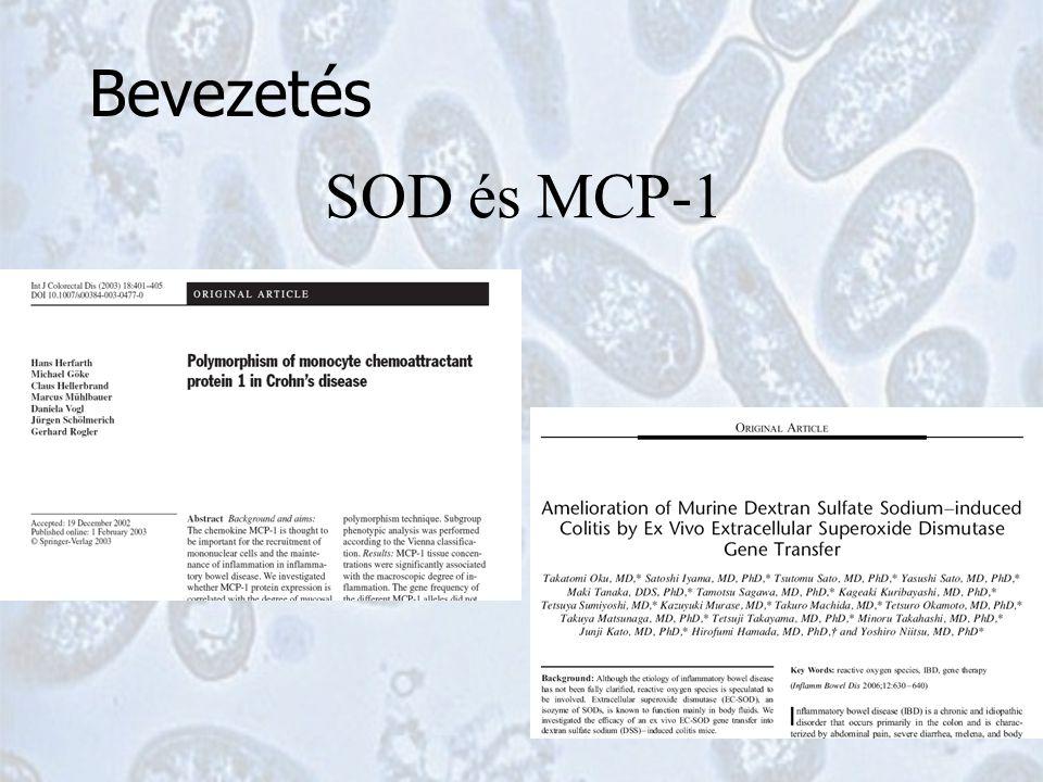 SOD és MCP-1 Bevezetés