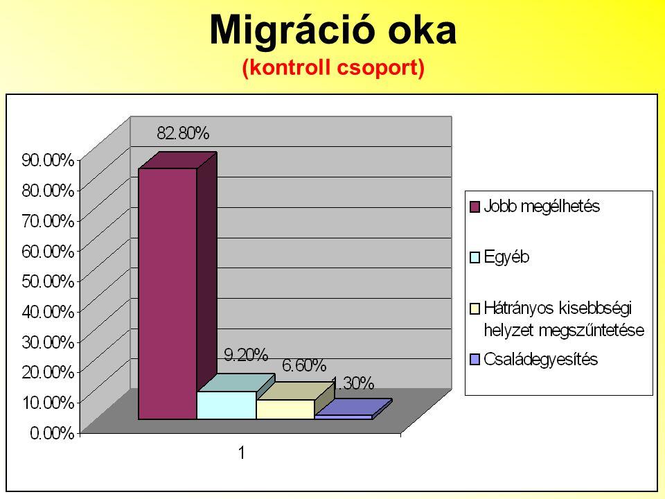 Migráció oka (kontroll csoport)