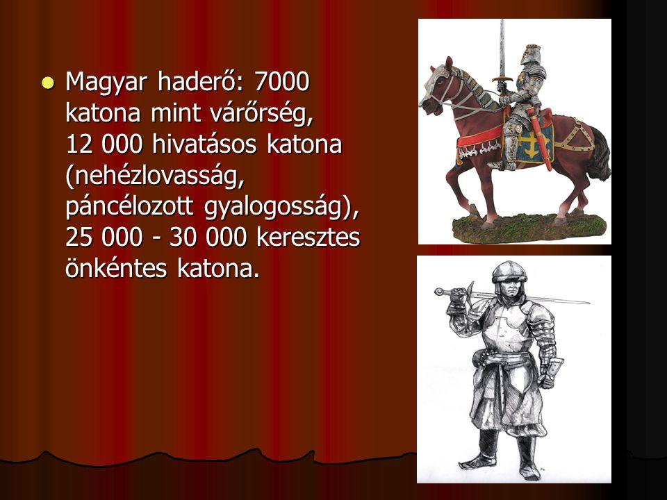 Magyar haderő: 7000 katona mint várőrség, 12 000 hivatásos katona (nehézlovasság, páncélozott gyalogosság), 25 000 - 30 000 keresztes önkéntes katona.