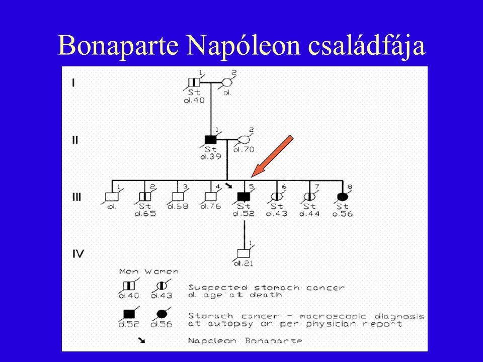 Bonaparte Napóleon családfája