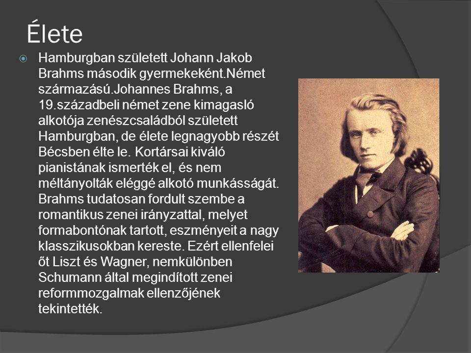 Élete  Hamburgban született Johann Jakob Brahms második gyermekeként.Német származású.Johannes Brahms, a 19.századbeli német zene kimagasló alkotója