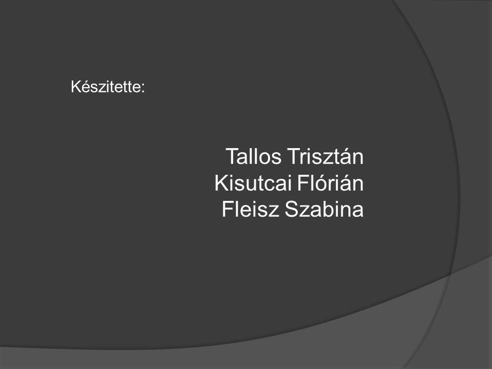 Készitette: Tallos Trisztán Kisutcai Flórián Fleisz Szabina