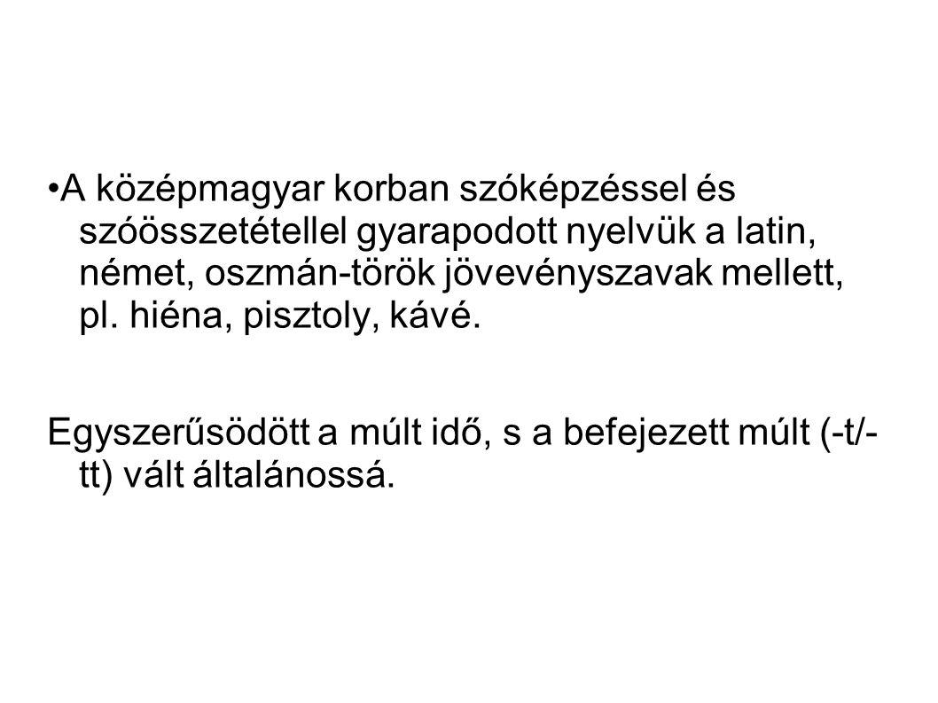 A biblia elsö forditása: Károly Gáspár fordította le először a Bibliát magyarra, melyet vizsolyi bibliának nevezzünk.