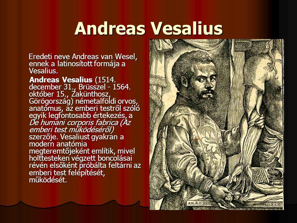 Andreas Vesalius Eredeti neve Andreas van Wesel, ennek a latinosított formája a Vesalius. Eredeti neve Andreas van Wesel, ennek a latinosított formája