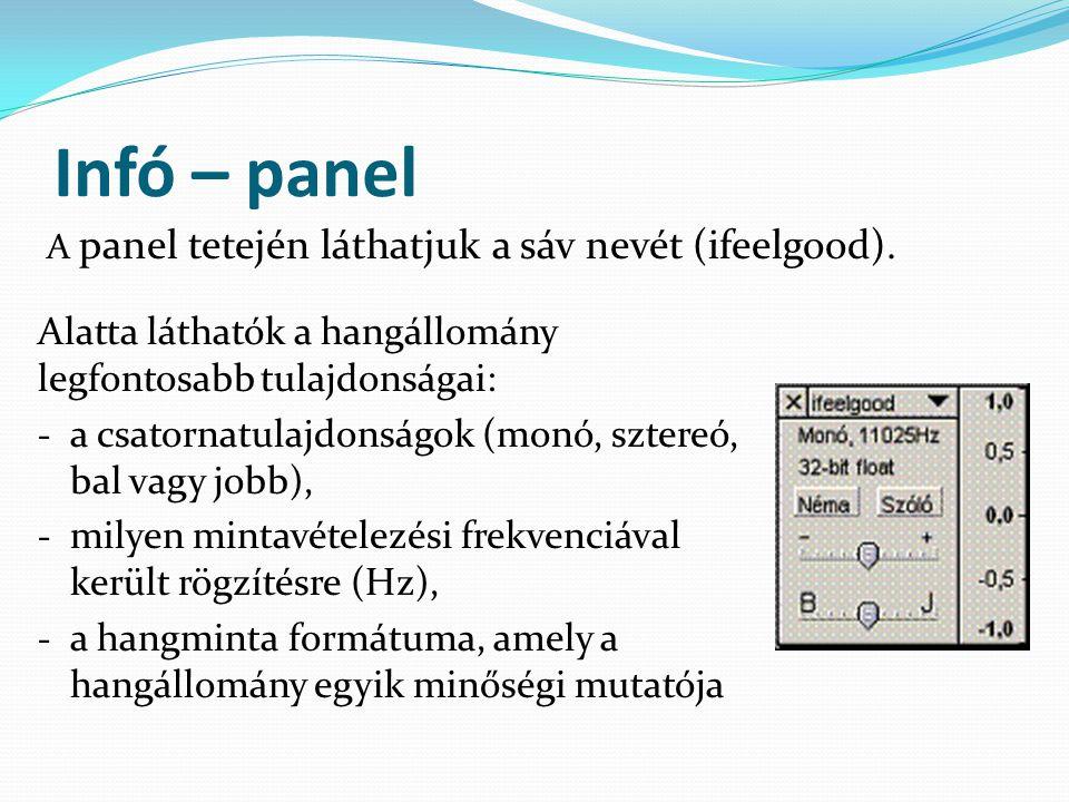 Infó – panel Alatta láthatók a hangállomány legfontosabb tulajdonságai: - a csatornatulajdonságok (monó, sztereó, bal vagy jobb), - milyen mintavétele