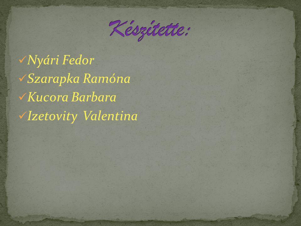 Nyári Fedor Szarapka Ramóna Kucora Barbara Izetovity Valentina