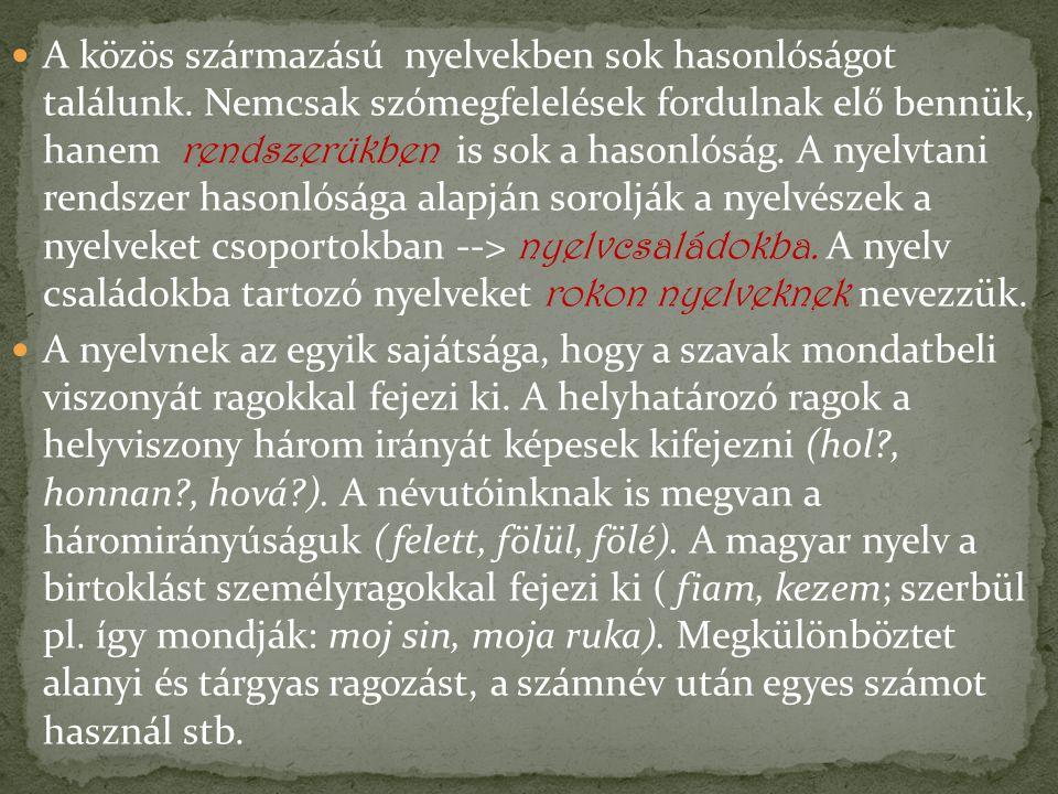 A közös származású nyelvekben sok hasonlóságot találunk. Nemcsak szómegfelelések fordulnak elő bennük, hanem rendszerükben is sok a hasonlóság. A nyel