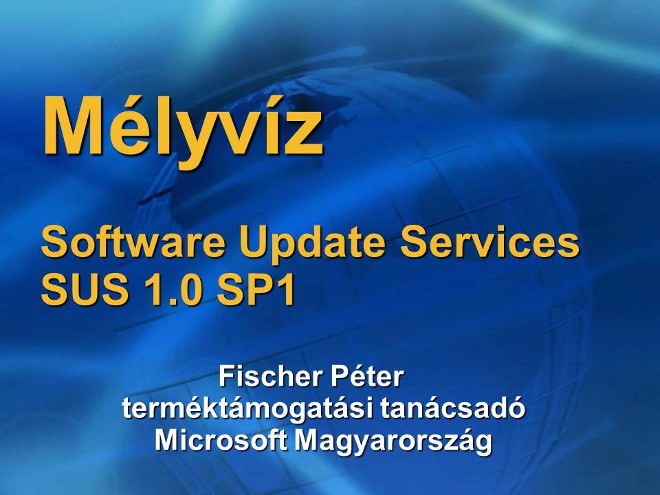 Mélyvíz Software Update Services SUS 1.0 SP1 Fischer Péter terméktámogatási tanácsadó Microsoft Magyarország