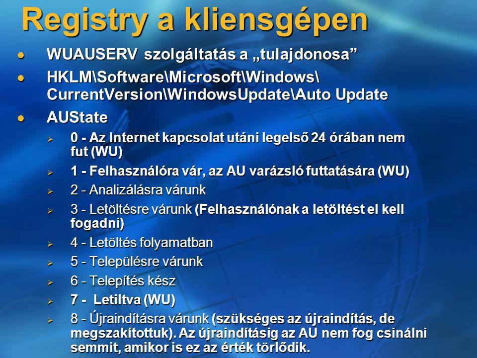 "Registry a kliensgépen WUAUSERV szolgáltatás a ""tulajdonosa"" WUAUSERV szolgáltatás a ""tulajdonosa"" HKLM\Software\Microsoft\Windows\ CurrentVersion\Win"