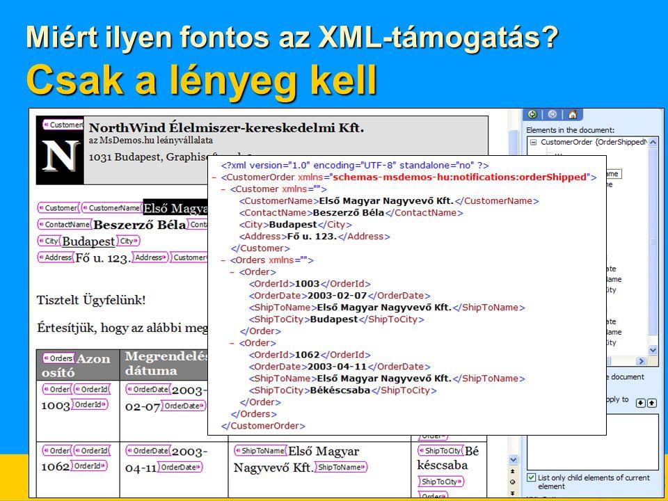 Miért ilyen fontos az XML-támogatás? Csak a lényeg kell