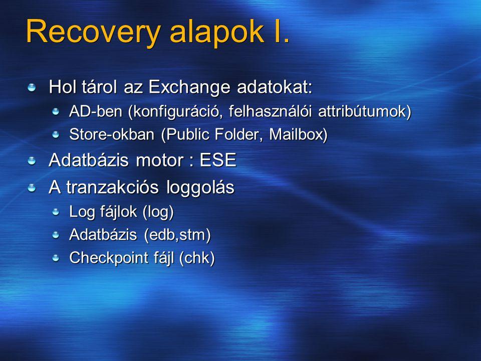 Recovery alapok I.