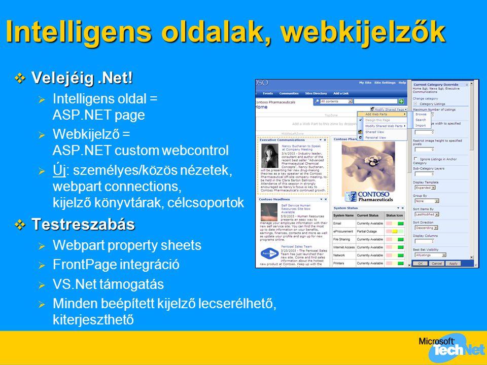 Intelligens oldalak, webkijelzők  Velejéig.Net!  Intelligens oldal = ASP.NET page  Webkijelző = ASP.NET custom webcontrol  Új: személyes/közös néz
