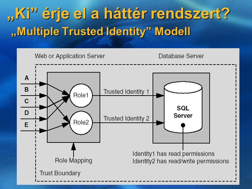 """""""Ki érje el a háttér rendszert """"Multiple Trusted Identity Modell"""