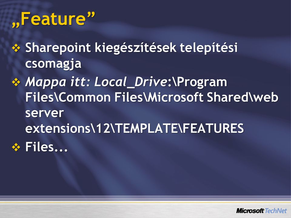"""Feature""  Sharepoint kiegészítések telepítési csomagja  Mappa itt: Local_Drive:\Program Files\Common Files\Microsoft Shared\web server extensions\1"