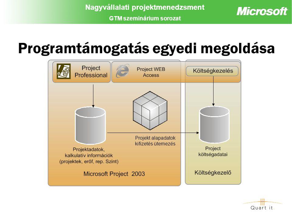 Nagyvállalati projektmenedzsment GTM szeminárium sorozat Programtámogatás egyedi megoldása Projekt alapadatok kifizetés ütemezés