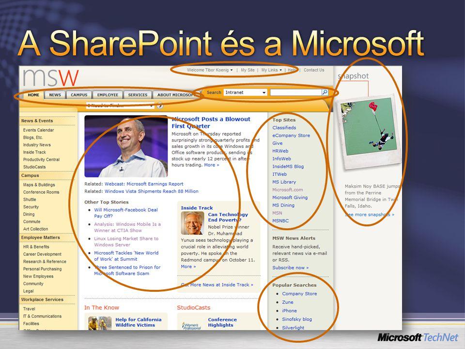 """A SharePoint Servert használom a saját prezentációk, technikai dokumentumok, feljegyzések tárolására az ügyfélprojekteken dolgozó """"virtuális csapatok tagjai által előállított anyagok elérhetővé tételére a munkatársak adatainak frissen tartására Egy szerver nem szerver vannak webhelyeim a központi és a leányvállalati SharePointban is"""