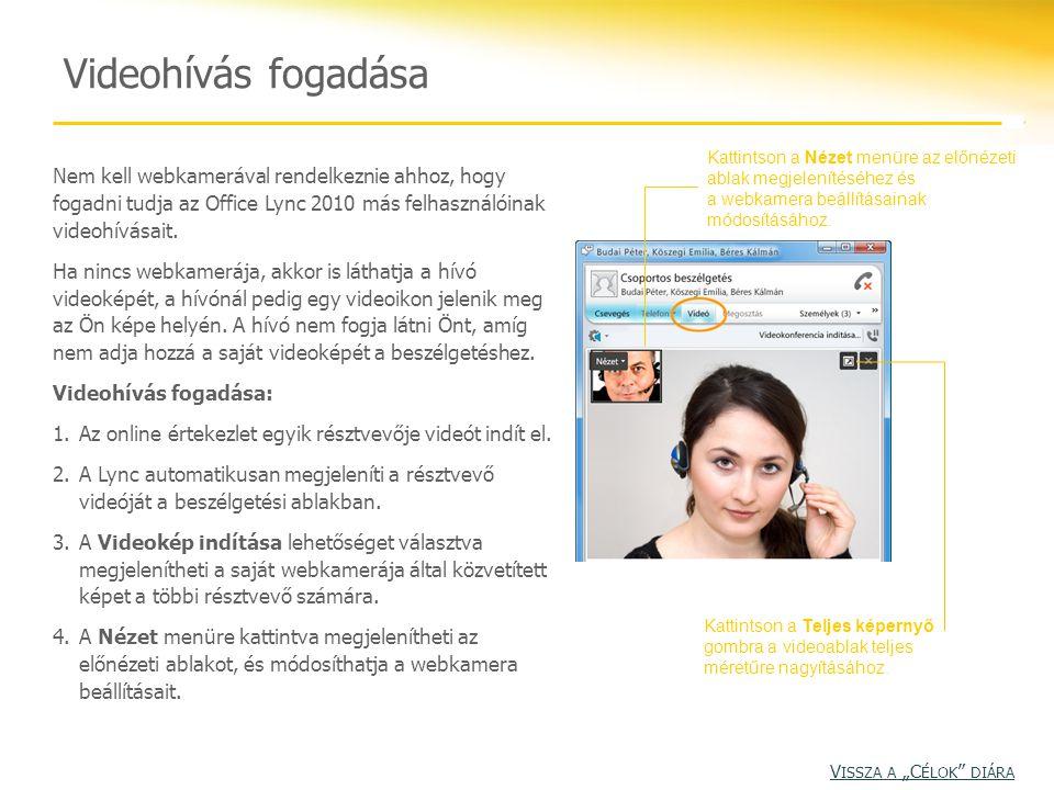 Nem kell webkamerával rendelkeznie ahhoz, hogy fogadni tudja az Office Lync 2010 más felhasználóinak videohívásait. Ha nincs webkamerája, akkor is lát