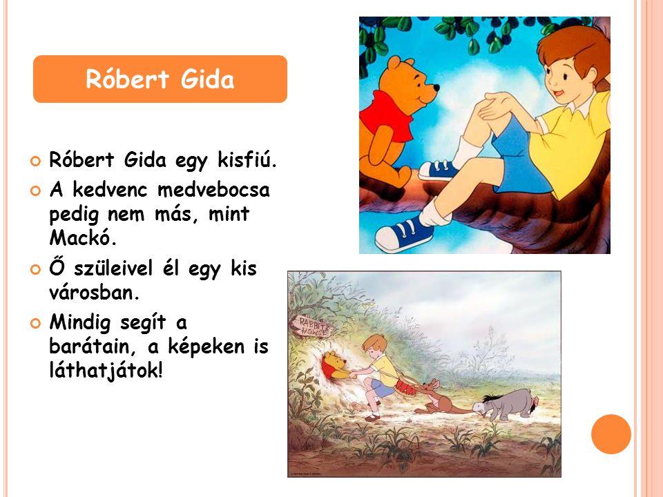 Róbert Gida egy kisfiú. A kedvenc medvebocsa pedig nem más, mint Mackó. Ő szüleivel él egy kis városban. Mindig segít a barátain, a képeken is láthatj