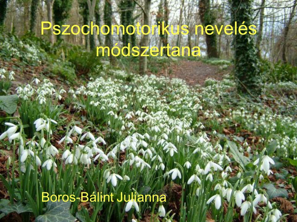 Pszochomotorikus nevelés módszertana Boros-Bálint Julianna