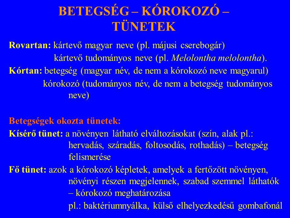 Rovartan: kártevő magyar neve (pl. májusi cserebogár) kártevő tudományos neve (pl. Melolontha melolontha). Kórtan: betegség (magyar név, de nem a kóro
