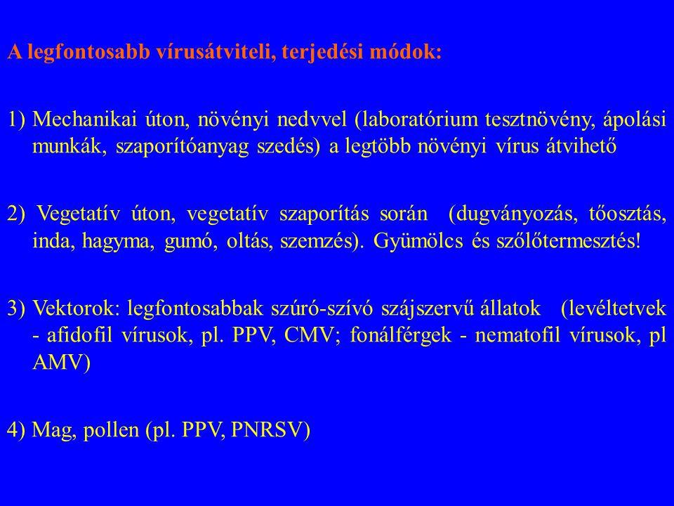 A legfontosabb vírusátviteli, terjedési módok: 1)Mechanikai úton, növényi nedvvel (laboratórium tesztnövény, ápolási munkák, szaporítóanyag szedés) a