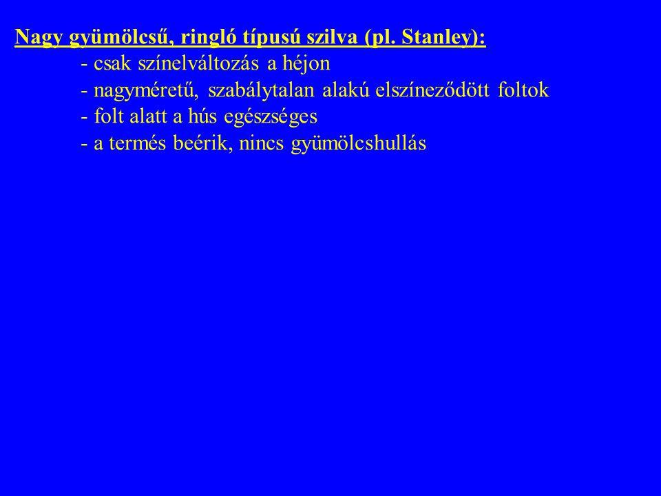 Nagy gyümölcsű, ringló típusú szilva (pl. Stanley): - csak színelváltozás a héjon - nagyméretű, szabálytalan alakú elszíneződött foltok - folt alatt a