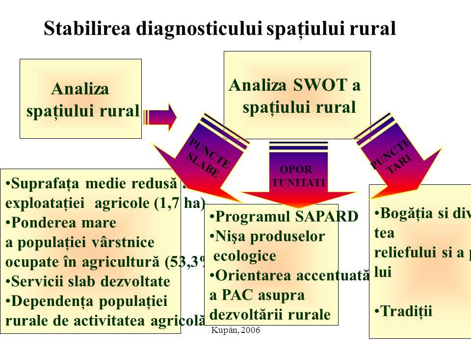 Kupán, 2006 Stabilirea diagnosticului spaţiului rural Analiza spaţiului rural Analiza SWOT a spaţiului rural Suprafaţa medie redusă a exploataţiei agr