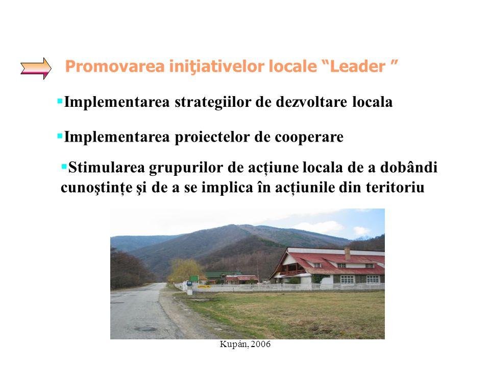"""Kupán, 2006 Promovarea iniţiativelor locale """"Leader """"  Implementarea strategiilor de dezvoltare locala  Implementarea proiectelor de cooperare  Sti"""