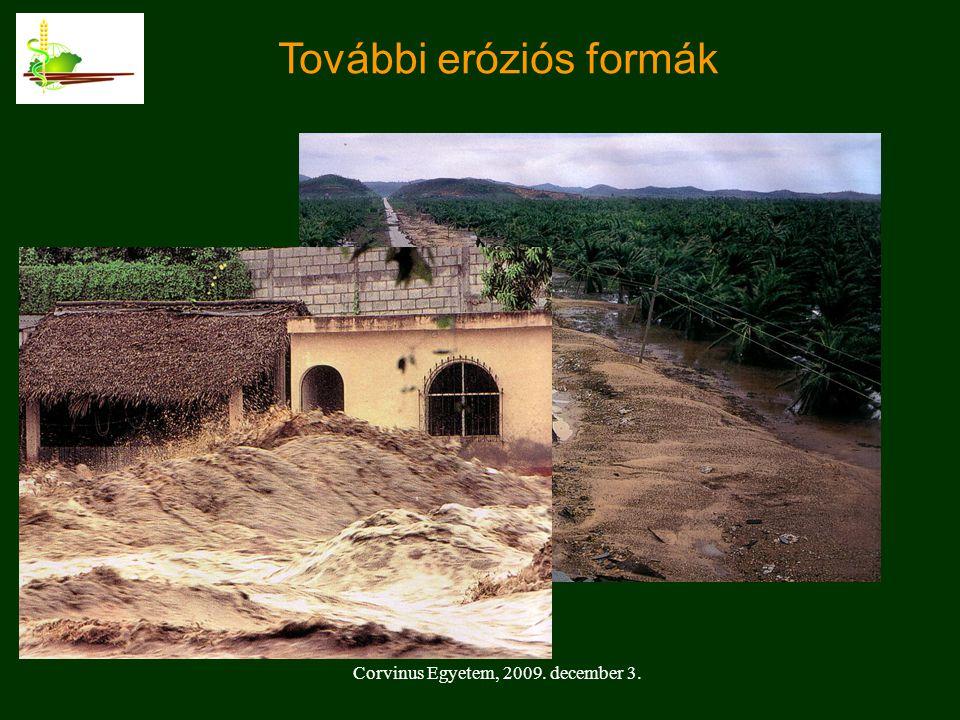 Corvinus Egyetem, 2009. december 3. További eróziós formák
