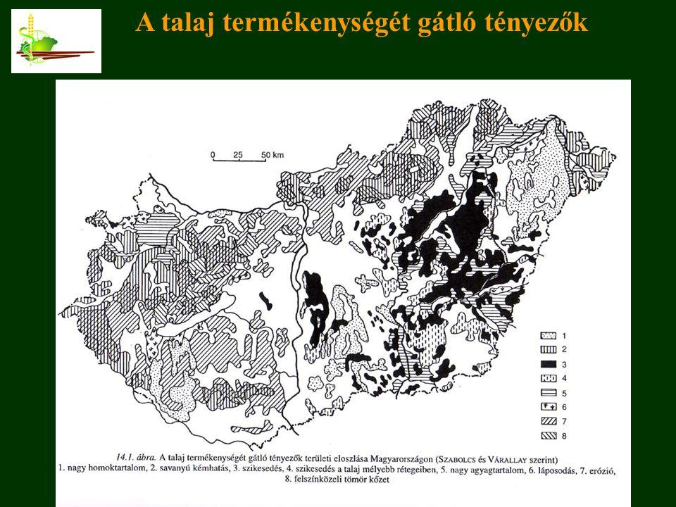 Corvinus Egyetem, 2009. december 3. A talaj termékenységét gátló tényezők