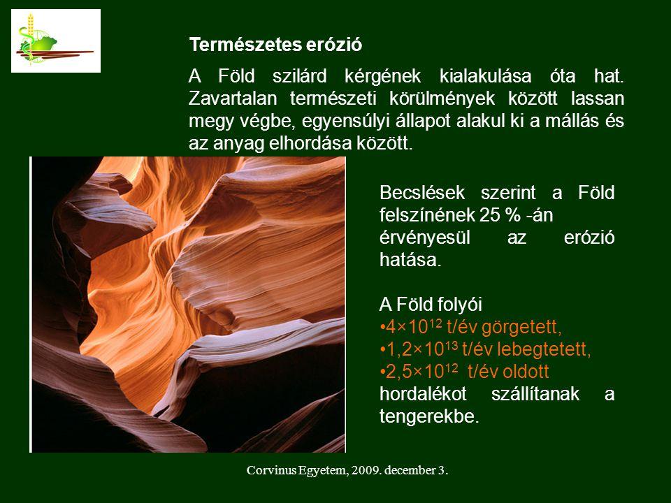 Corvinus Egyetem, 2009.december 3. Természetes erózió A Föld szilárd kérgének kialakulása óta hat.