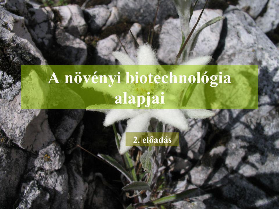 A növényi biotechnológia alapjai 2. előadás