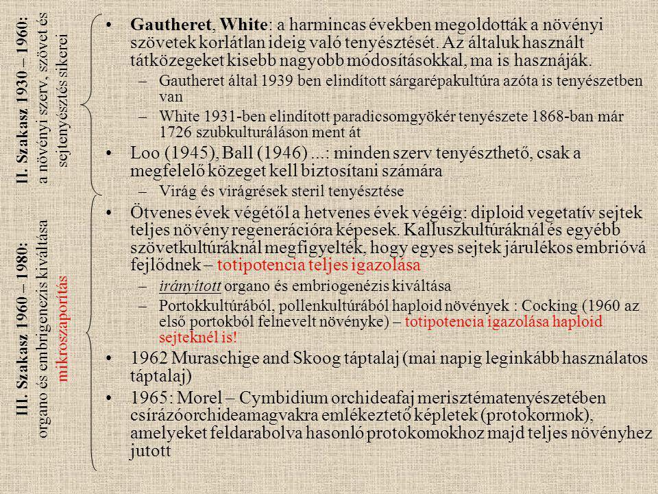 II. Szakasz 1930 – 1960: a növényi szerv, szövet és sejtenyésztés sikerei Gautheret, White: a harmincas években megoldották a növényi szövetek korlátl