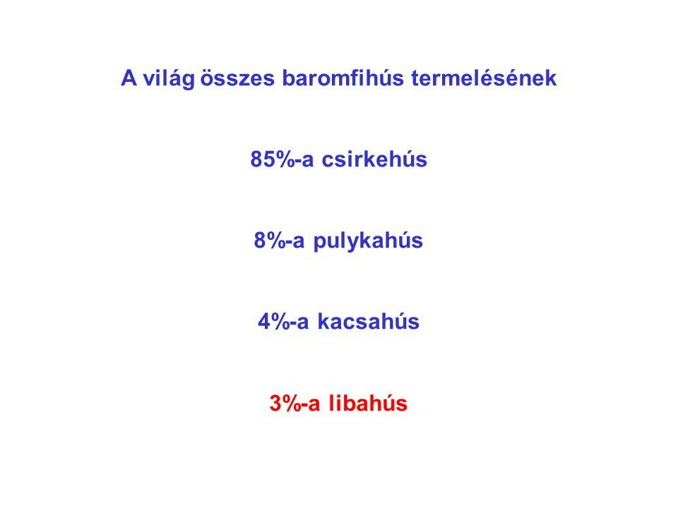 MAGYARORSZÁG LÚDTERMÉKEK, 15%-OS RÉSZESEDÉS EXPORT ÁRBEVÉTEL 40% !! LEGNAGYOBB PIAC EURÓPÁBAN NSZK
