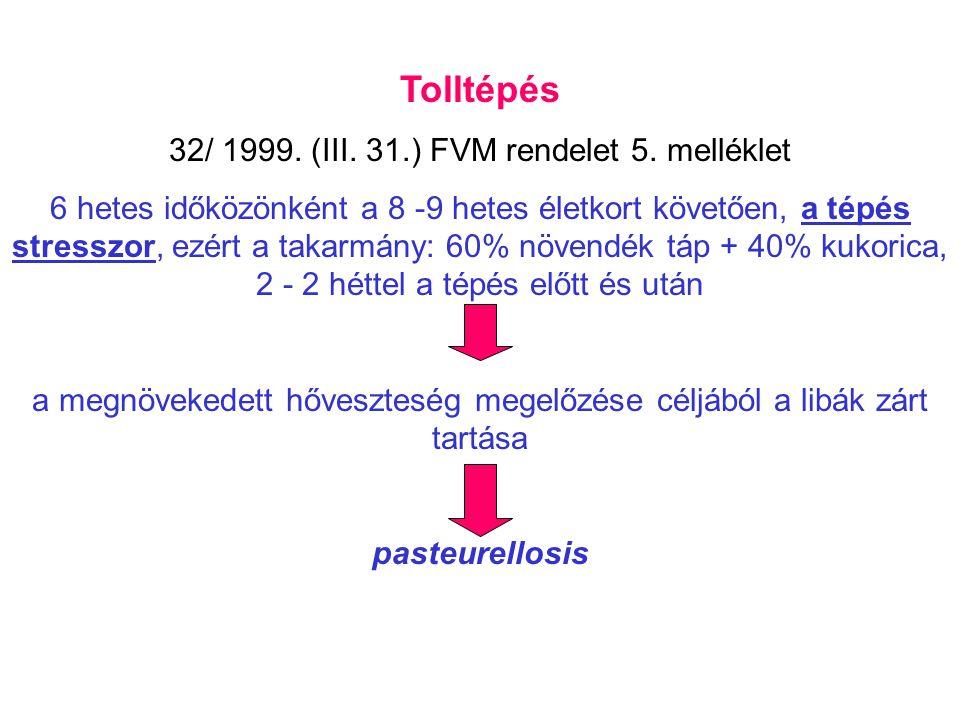 Tolltépés 32/ 1999. (III. 31.) FVM rendelet 5. melléklet 6 hetes időközönként a 8 -9 hetes életkort követően, a tépés stresszor, ezért a takarmány: 60