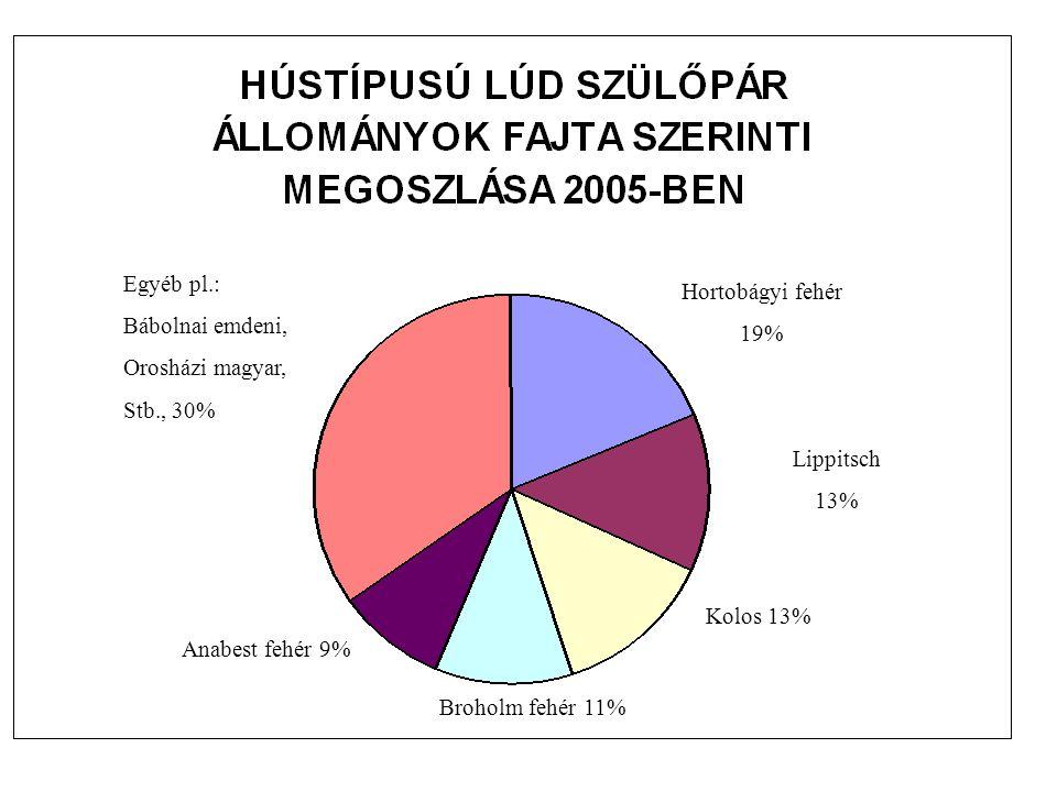 Hortobágyi fehér 19% Lippitsch 13% Kolos 13% Broholm fehér 11% Anabest fehér 9% Egyéb pl.: Bábolnai emdeni, Orosházi magyar, Stb., 30%