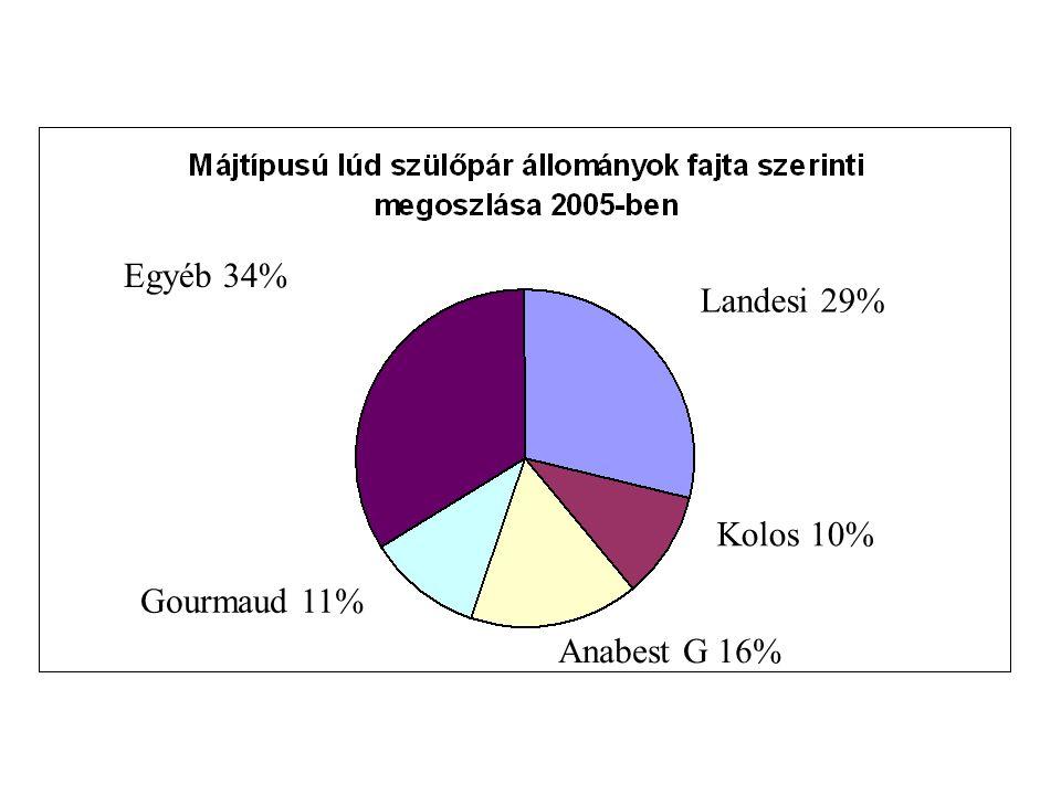 Landesi 29% Kolos 10% Anabest G 16% Gourmaud 11% Egyéb 34%