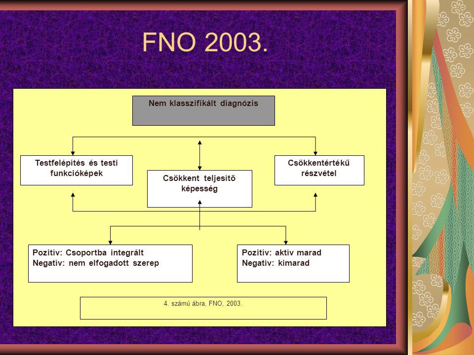 FNO 2003. Nem klasszifikált diagnózis Testfelépítés és testi funkcióképek Csökkent teljesítő képesség Csökkentértékű részvétel Pozitív: Csoportba inte