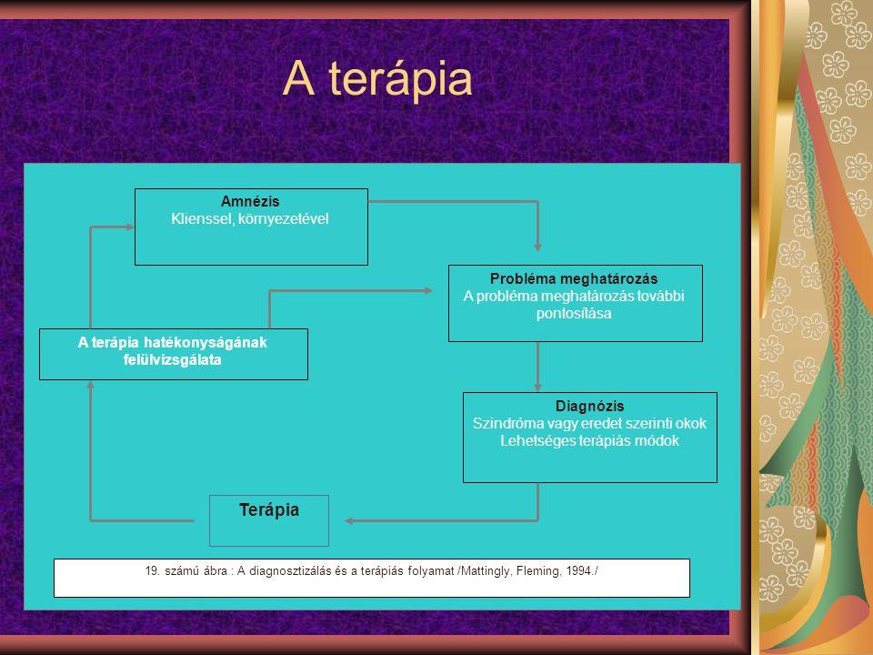A terápia Amnézis Klienssel, környezetével A terápia hatékonyságának felülvizsgálata Diagnózis Szindróma vagy eredet szerinti okok Lehetséges terápiás módok Terápia Probléma meghatározás A probléma meghatározás további pontosítása 19.