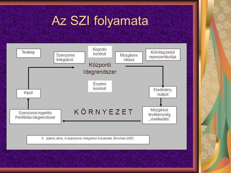 """Az SZI folyamata Testkép Mozgásos tevékenység """"viselkedés Eredmény, output Input Külvilág belső reprezentációja Kognitív kontroll Érzelmi kontroll Szenzoros ingerlés Perifériás idegrendszer K Ö R N Y E Z E T Központi Idegrendszer 9."""