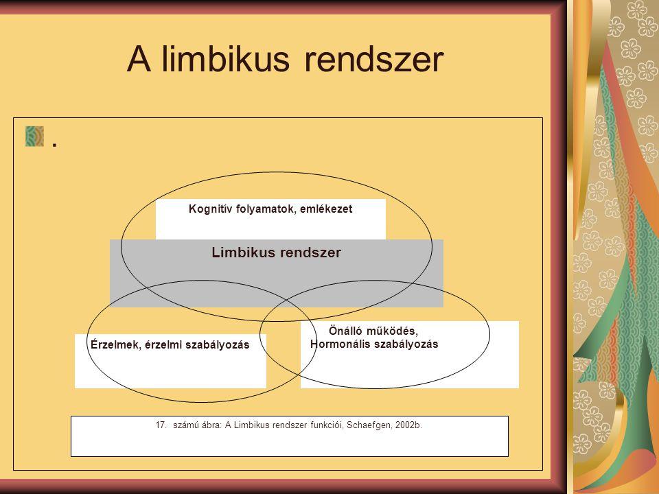 A limbikus rendszer. Limbikus rendszer Érzelmek, érzelmi szabályozás Önálló működés, Hormonális szabályozás Kognitív folyamatok, emlékezet 17. számú á