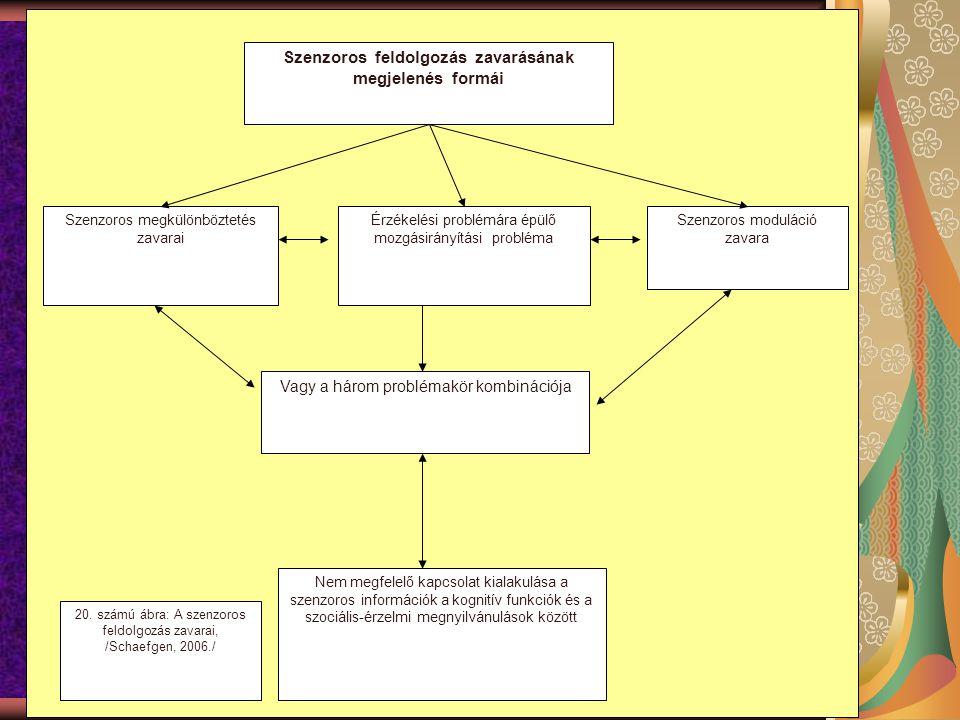 Szenzoros feldolgozás zavarásának megjelenés formái Szenzoros megkülönböztetés zavarai Érzékelési problémára épülő mozgásirányítási probléma Szenzoros moduláció zavara Vagy a három problémakör kombinációja Nem megfelelő kapcsolat kialakulása a szenzoros információk a kognitív funkciók és a szociális-érzelmi megnyilvánulások között 20.