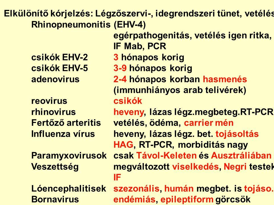 Elkülönítő kórjelzés: Légzőszervi-, idegrendszeri tünet, vetélés Rhinopneumonitis (EHV-4) egérpathogenitás, vetélés igen ritka, IF Mab, PCR csikók EHV