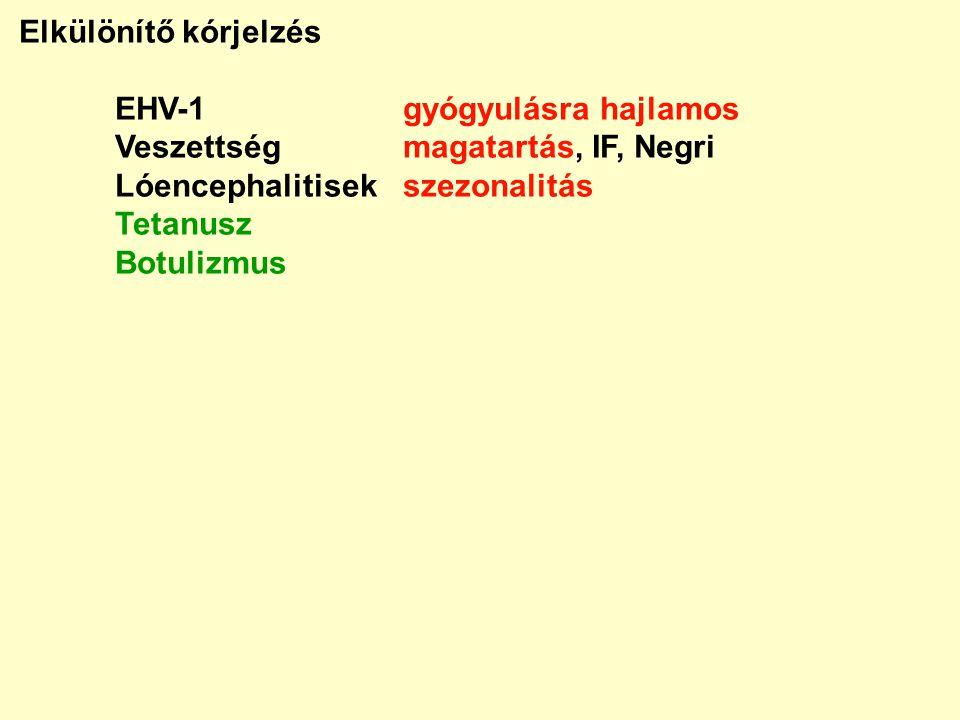 Elkülönítő kórjelzés EHV-1gyógyulásra hajlamos Veszettségmagatartás, IF, Negri Lóencephalitisekszezonalitás Tetanusz Botulizmus