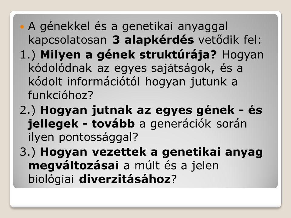 A genetikát, mint elvek és analitikai eljárások rendszerét az 1860-as években alapította meg a moráviai ágostonrendi szerzetes Gregor Mendel.