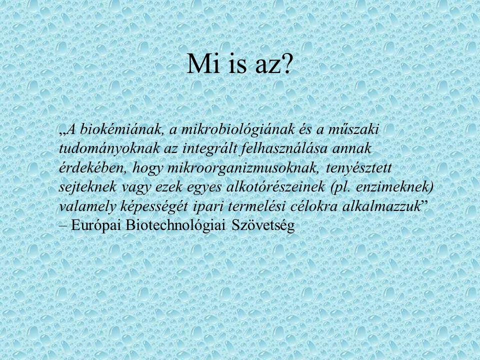Fermentáció Klasszikus nemesítés Géntechnológia –Egy gént egy élőlényből kiemelünk és átültetjük egy másikba –Nehézségek A gén nem épül be Nem várt módon nyilvánul meg Hatás más génekre Klasszikus biotechnológia Modern biotechnológia !